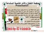 OPHFSD-Presentation-Sub-Arabic-05_pagenumber.001