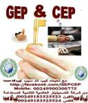 GEP&CEP-02