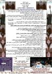 Resime-ahmed EL-Mutasim-Arabic-06